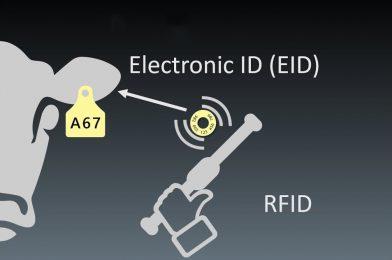 ADVANCED TECHNOLOGY TAGGING- RFID